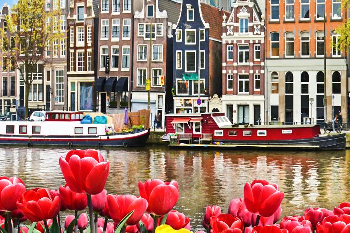 Amsterdam - pohled na nábřeží s barevnými domy a loděmi, s vodním kanálem a záhony tulipánů v popředí