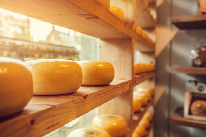 Bochníky holandského sýra vyskládané na dřevěných policích v tradičním holandském obchodě